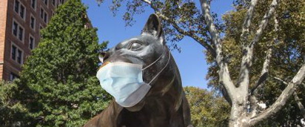 Panther in a mask