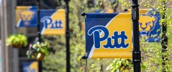Pitt flags